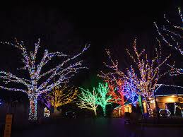 Detroit Zoo Night Lights by Here Are The Best Holiday Light Displays In The D C Area Curbed Dc