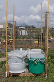 self watering planters rolla community gardens