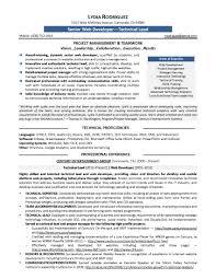 Job Winning Resume Examples Web Developer Experience Resume Resume For Your Job Application