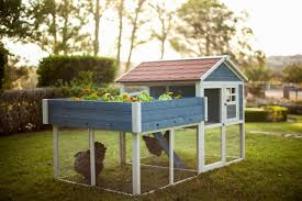 advantek the rooftop garden chicken coop u0026 reviews wayfair