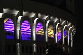 tiger stadium lights display hundreds of color schemes news