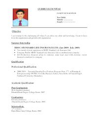 resume for job application pdf download create best resume format for job application job resume format