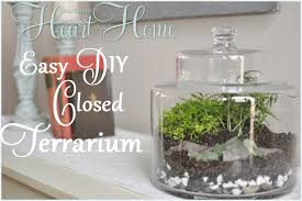 terrarium containers at home goods archives all things heart and