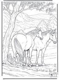 farm animal coloring pages farm animal coloring pages rooster