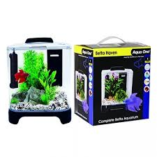 Betta Haven Fighter Fish Aquarium with Heater and Filter Amazing