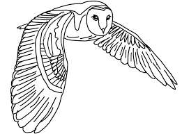 Barn Owl Coloring Pages Getcoloringpages Com Owl Color Pages