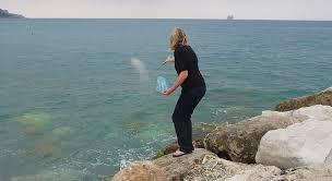 scattering ashes at sea peaceful endings for pets customized pet memorial services are