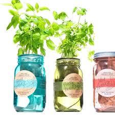 self watering indoor planters mason jar herb garden self watering kitchen herb kit three self