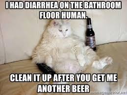 Clean Cat Memes - fat cat memes clean mne vse pohuj