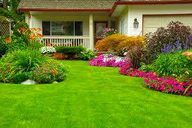 life by design home business bring your lawn back to life by learning how overseed a
