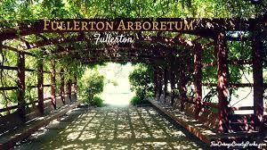 Cal State Fullerton Campus Map fullerton arboretum explore outdoor rooms full of trees