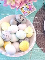 Decorating Easter Eggs Dye by 30 Best Easter Egg Decorating Ideas U2022 The Celebration Shoppe