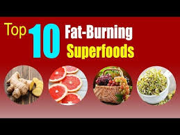 top 10 fat burning foods tips to burn belly fat how and
