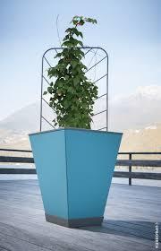 jardin interieur design crowdfunding up u0026green réinvente le jardin d u0027intérieur blog