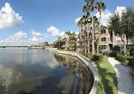 1 Bedroom Apartments Tampa Fl 1 Bedroom Apartments For Rent In Tampa Fl 258 Rentals U2013 Rentcafé