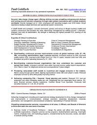 Sample Resume Of Ceo by 10 Ceo Resume Templates Free Word Pdf