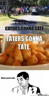 Gator Meme - rmx rmx haters gators by sbtrackrunner meme center