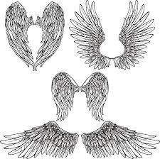 animal wing clip art vector images u0026 illustrations istock