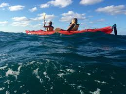 morning tour magnetic island sea kayaks