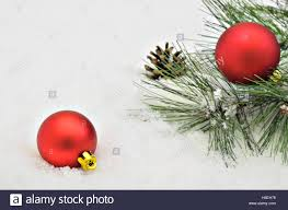 two tree balls with fir sprigs and pine cone on snow