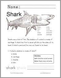 free printable shark worksheet grades 1 3 kids