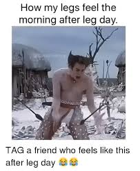 Morning After Meme - 25 hilarious after leg day meme word porn quotes love quotes