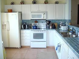 Grey Kitchen Cabinets With White Appliances Dark Wood Kitchen Cabinets With White Appliances Black Light Gray
