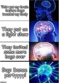 Light Show Meme - expanding brain meme imgflip