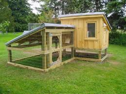 Backyard House Plans by Chicken Coop In Backyard 12 Chicken House Plans Backyard Chicken