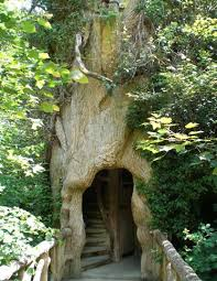 Cool Tree Houses Cool Tree Houses Inspired Architecture Pinterest Tree Houses