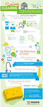 How To Do Spring Cleaning 11 Best Moen Infographics Images On Pinterest Infographics