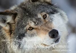 wolf symbolism meaning wolf spirit totem power