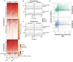 Mcg Floor Plan by Population Scale Mapping Of Transposable Element Diversity Reveals
