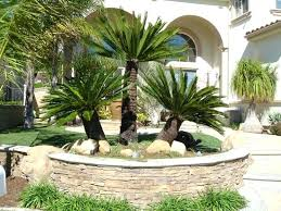 Tropical Gardening Ideas Landscaping Ideas With Palm Trees Tropical Front Yard Landscaping
