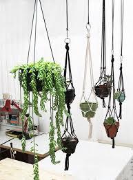 diy indoor wall gardens