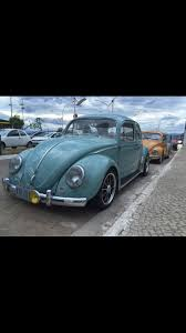137 best vw images on pinterest volkswagen beetles old cars and