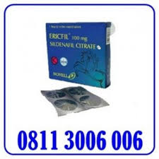 erecfil pil kuda biru obat pria perkasa 08113006006 di magetan
