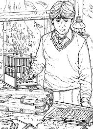 coloring page harry potter and the chamber of secrets harry