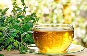 Teh Mint 14 manfaat menakjubkan teh peppermint kumpulan