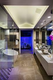 bathroom ceiling ideas modern bathroom ideas design accessories pictures zillow