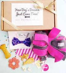gifts for dogs christmas gift guide dog and guide dog