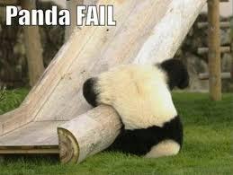 Panda Meme Mascara - 84 stupid panda memes