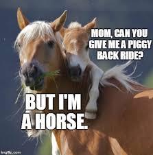 Mine Meme - foal of mine memes imgflip