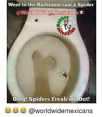 I Saw A Spider Meme - went to the bathroom saw a spider wide mexicans omg spiders freak