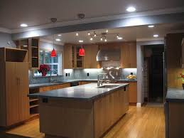 Bamboo Kitchen Cabinets Caramelized Bamboo Kitchen Cabinets Nucleus Home