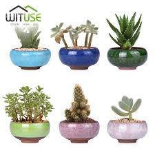 online buy wholesale succulent planter from china succulent