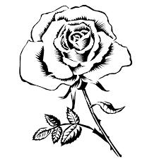 57 dessins de coloriage roses à imprimer sur laguerche com page 1