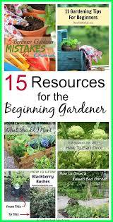How To Start A Garden Bed Download Beginning Gardening Solidaria Garden