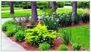Backyard Designer Tool Landscape Backyard Design Design Ideas Photo Gallery
