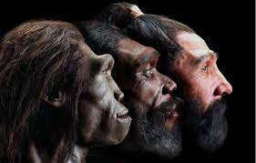 image of white skin developed in europe only as recently as 8 000 years ago